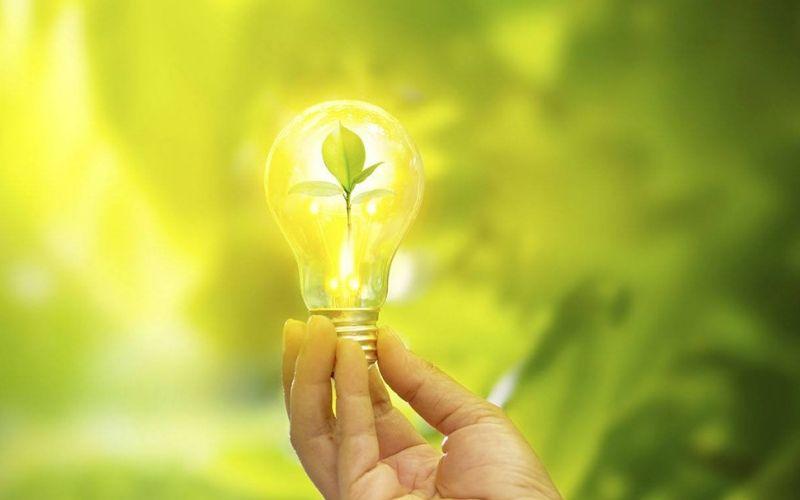 Design Sem Nome (26) - Contabilidade na Bahia - BA | Confacilidade - O que é um negócio sustentável?